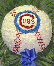 Cubs Baseball Tribute