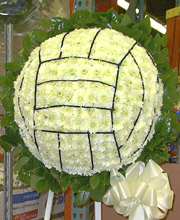 Volleyball of Flowers