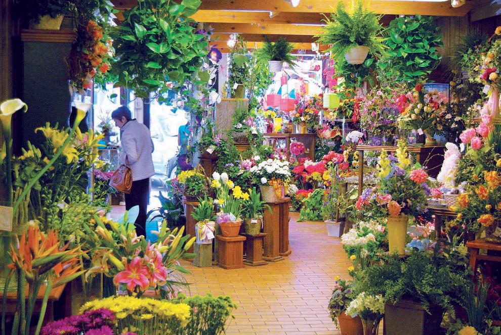Naperville Phillip's Flower Shop